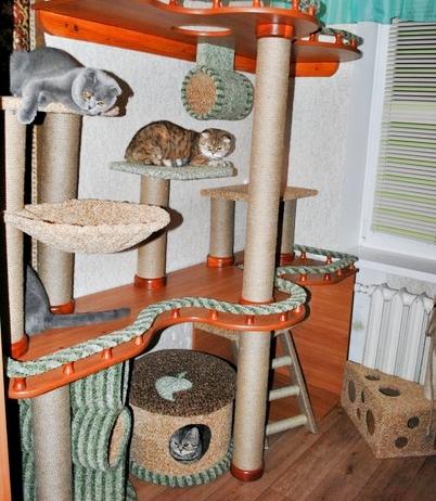 Как построить домик для котов своими руками